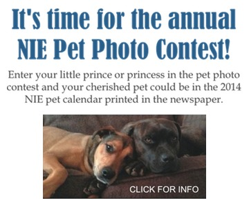 Pet Photo Contest